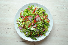Spring vegan salad with tomato, cucumbers, radish and chinese cabbage. On a white plate. Top view Stock Image