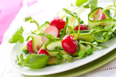 Spring vegetable salad Royalty Free Stock Image