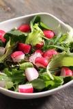Spring vegetable salad Stock Photos