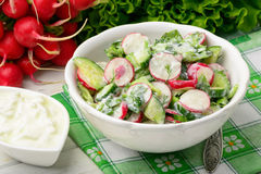 Spring vegetable salad with radish, cucumbers, greens and natural yogurt. Spring vegetable salad with radish, cucumbers, greens and natural yogurt on white Royalty Free Stock Images