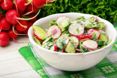 Spring vegetable salad with radish, cucumbers, greens and natural yogurt. Spring vegetable salad with radish, cucumbers, greens and natural yogurt on white Stock Photos