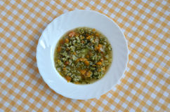 Spring vegetable soup Stock Images