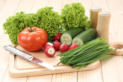 Spring vegetables Stock Images