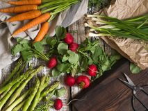 Spring vegetables - carrots, radishes, asparagus, green onions on an old wooden background. Open space. Top view Stock Image