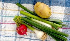 Spring vegetables, fresh, potato,garlic,onion, and radish , Stock Photos