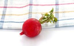 Spring vegetables, fresh, radish, Royalty Free Stock Photography