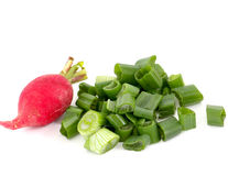 Spring vegetables, fresh, radish. And sprin onion Stock Photos