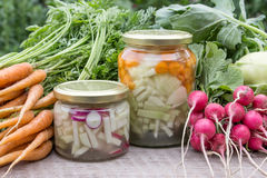 Spring vegetables. Glasses with lactic acid pickled vegetables, fresh Turnip, carrots and radishes stock photos