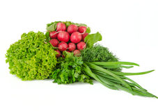 Spring vegetables Stock Photography