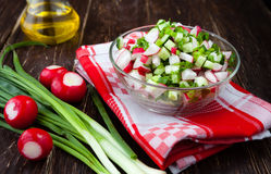 Spring vegetables, radishes and onions in a fresh  salad Royalty Free Stock Photography