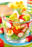Spring vegetables salad Stock Photo