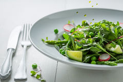 Spring vegetarian salad with mix of vegetables Royalty Free Stock Photography