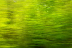 Spring view from car window Royalty Free Stock Image