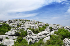 Spring view of El Torcal nature reserve Royalty Free Stock Images