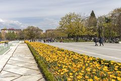 Spring view of flower garden in front of National Palace of Culture, Bulgaria. SOFIA, BULGARIA -APRIL 21, 2019: Spring view of flower garden in front of National royalty free stock images