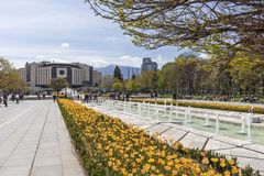 Spring view of flower garden in front of National Palace of Culture, Bulgaria. SOFIA, BULGARIA -APRIL 21, 2019: Spring view of flower garden in front of National royalty free stock photos