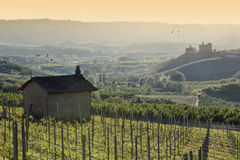 Spring View the Langhe Unesco heritage Stock Photography