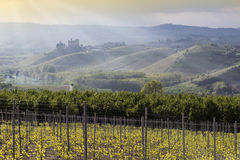 Spring View The Langhe Unesco Heritage Stock Image