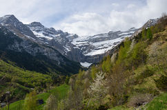 Spring view of the valley of Gavarnie Royalty Free Stock Photo