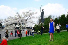 Spring in Vilnius city with sakura blossom Royalty Free Stock Photo