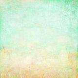 Spring vintage background Stock Photos