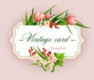 Spring  vintage elegant card with  flowers. Vector illustration Stock Image