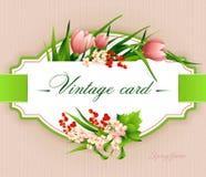 Spring  vintage elegant card with  flowers. Vector illustration Royalty Free Stock Image