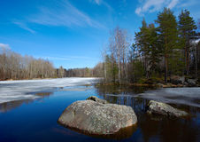 Spring on Vuoksa Stock Photography