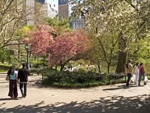 Spring Walk. People enjoying a nice Spring walk through Central Park in Manhattan stock photos