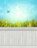 Spring wall background/backdrop Royalty Free Stock Images