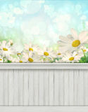 Spring wall background/backdrop Stock Image