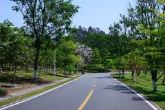 Green Road. In spring, it was taken in Songshan Lake Ecological Garden in Dongguan Royalty Free Stock Photo