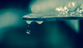 Spring Water drop droplets global warming royalty free stock photography