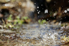 Spring water drops texture fresh Royalty Free Stock Photo
