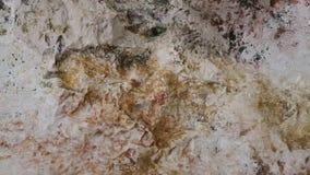 Spring water flowing between rocks stock footage