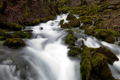 Spring Water Stock Images