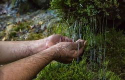Spring water, fount. hands, dial water. The man, a drinker and a rising spring water in the Palm of your hand. Mountain spring water of the Caucasus Royalty Free Stock Photo