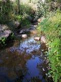 Spring water. Natural spring water flowing through Mountain slopes Stock Photo