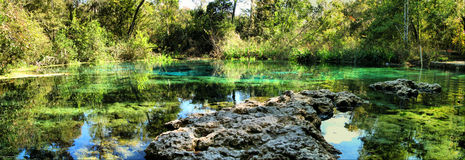 Spring Water Panoramic. Clear cold spring panoramic at Clear Springs Park in Fort White, Florida (USA Stock Images