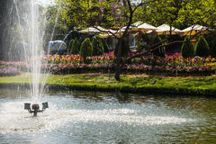 Spring water in public park Royalty Free Stock Images