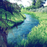 Spring water Royalty Free Stock Photography