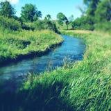 Spring water Royalty Free Stock Image