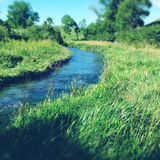 Spring water. Pure clean spring water stream Stock Image