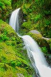 Spring water waterfall Stock Image