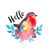 Spring watercolor card with Robin and flowers. Stylish hand drawn print. vector illustration