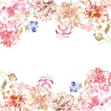 Spring watercolor floral border with delicate pink flowers in shabby chic vintage style, on white background with space for text. stock images