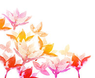 Spring watercolor flowers. Stock Photos