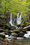 Spring waterfall Stock Photography