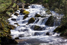 Spring waterfall. A spring waterfall is in the wooded mountains Royalty Free Stock Photos