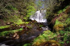 Spring Waterfall Royalty Free Stock Photos